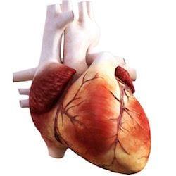 Cardiologo en San Luis Potosi Dr Josue Alejandro Silva v002 compressor