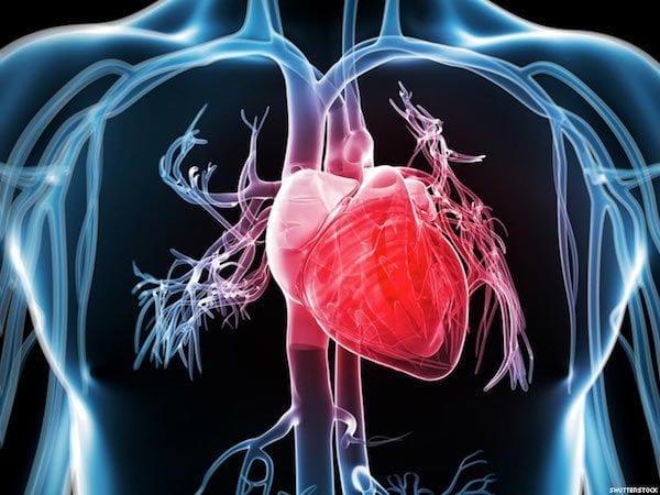 Dr Josue Alejandro Silva Ortiz Cirujano Cardiologo en San Luis Potosi Especialista en Cardiomiopatia v001 compressor